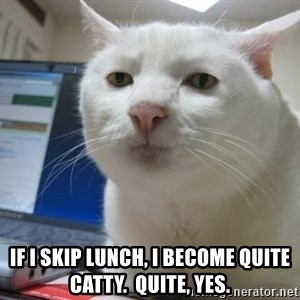 Serious Cat -  If I skip lunch, I become quite catty.  Quite, yes.