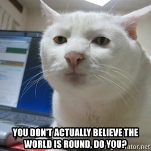Serious Cat -  you don't actually believe the world is round, do you?