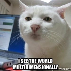 Serious Cat -  i see the world multidimensionally
