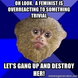 MRA Marmoset - Oh look.  A feminist is overreacting to something trivial Let's gang up and destroy her!