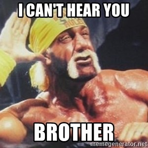 Hulk Hogan can't hear you - I can't hear you brother