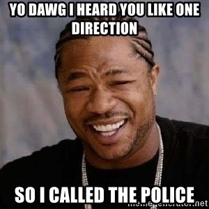 Yo Dawg - Yo dawg I heard you like one direction so i called the Police