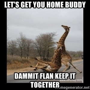 Trust Fall Giraffes - LET'S GET YOU HOME BUDDY DAMMIT FLAN KEEP IT TOGETHER