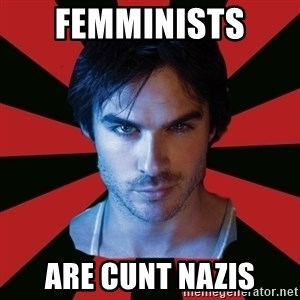 Sexy Damon - femminists  are cunt nazis