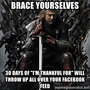 "Eddard Stark - Brace yourselves  30 days of ""I'm thankful for"" will throw up all over your Facebook feed"
