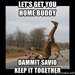 Trust Fall Giraffes - LET'S GET YOU                         HOME BUDDY DAMMIT SAVIO                      KEEP IT TOGETHER