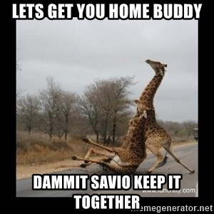 Trust Fall Giraffes - LETS GET YOU HOME BUDDY DAMMIT SAVIO KEEP IT TOGETHER