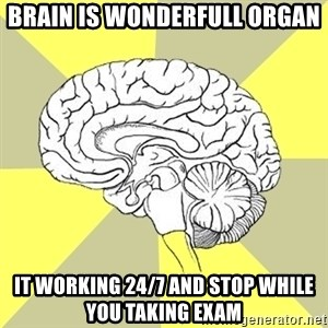 Traitor Brain - Brain is wonderfull organ it working 24/7 and stop while you taking exam