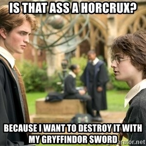 Harry Potter  - IS THAT ASS A HORCRUX? BECAUSE I WANT TO DESTROY IT WITH MY GRYFFINDOR SWORD