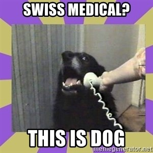 Yes, this is dog! - SWISS MEDICAL? This is dog