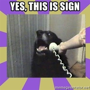 Yes, this is dog! - Yes, this is sign