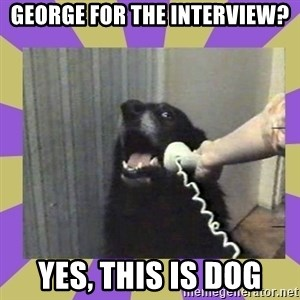 Yes, this is dog! - George for the interview? Yes, this is dog