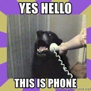 Yes, this is dog! - yes hello this is phone