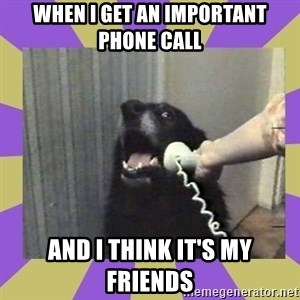 Yes, this is dog! - When I get an important phone call And I think it's my friends