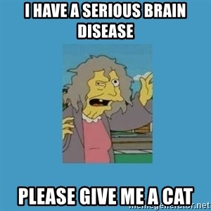 crazy cat lady simpsons - i have a serious brain disease please give me a cat