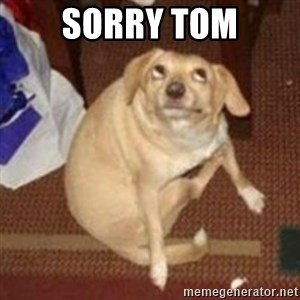 Oh You Dog - Sorry TOM