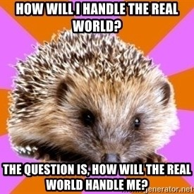Homeschooled Hedgehog - HOw will I handle the Real World? The question is, HOw will the real world handle me?