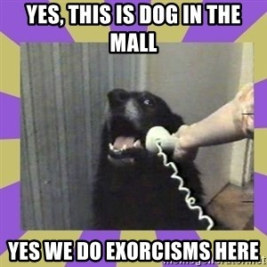 Yes, this is dog! - yes, this is dog in the mall yes we do exorcisms here