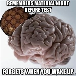Scumbag Brain - remembers material night before test forgets when you wake up