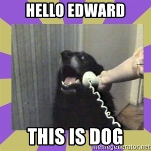 Yes, this is dog! - HELLO EDWARD THIS IS DOG