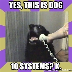 Yes, this is dog! - Yes, this is dog 10 systems? k.