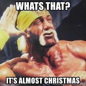 Hulk Hogan can't hear you - whats that? it's almost christmas