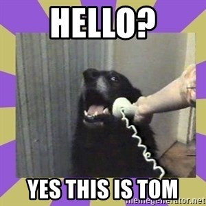 Yes, this is dog! - hello? Yes this is tom