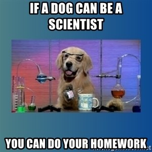 Chemistry Dog - If a dog can be a scientist you can do your homework
