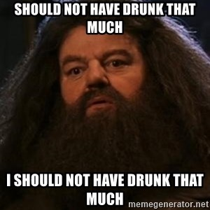 Hagrid what? - should not have drunk that much I should not have drunk that much