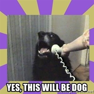 Yes, this is dog! -  YES, THIS WILL BE DOG