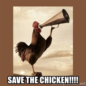 Rooster -  save the chicken!!!!