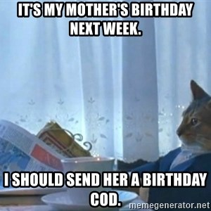newspaper cat realization - It's my mother's birthday next week. I should send her a birthday cod.