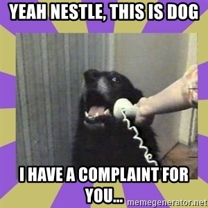 Yes, this is dog! - Yeah nestle, this is dog I have a complaint for you...