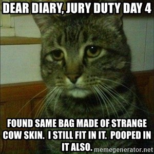 Depressed cat 2 - dear diary, jury duty day 4 found same bag made of strange cow skin.  i still fit in it.  pooped in it also.