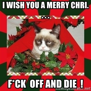 GRUMPY CAT ON CHRISTMAS - I wish you a merry chri. . . . f*ck  off and die  !