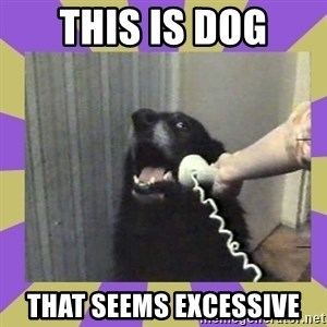 Yes, this is dog! - this is dog that seems excessive