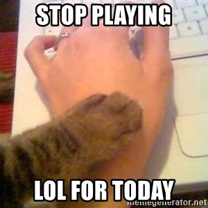 It's time to stop cat - stop playing lol for today
