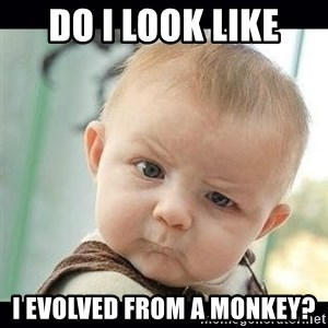 Skeptical Baby Whaa? - do i look like i evolved from a monkey?