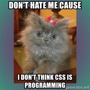 cute cat - don't hate me cause I don'T think CSS is Programming