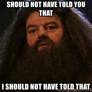 Hagrid what? - should not have told you that i should not have told that