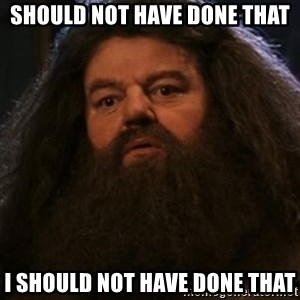 Hagrid what? - SHOULD NOT HAVE DONE THAT i SHOULD NOT HAVE DONE THAT