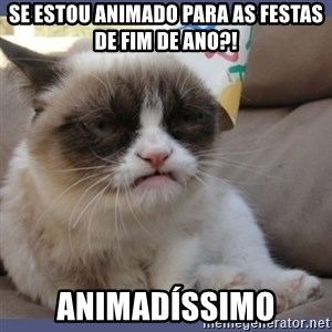 Birthday Grumpy Cat - Se estou animado para as festas de fim de ano?! Animadíssimo