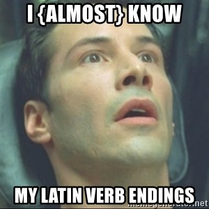 i know kung fu - I {almost} know my latin verb endings