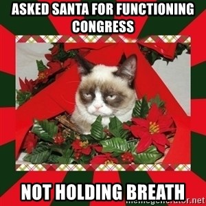 GRUMPY CAT ON CHRISTMAS - Asked santa for functioning congress not holding breath