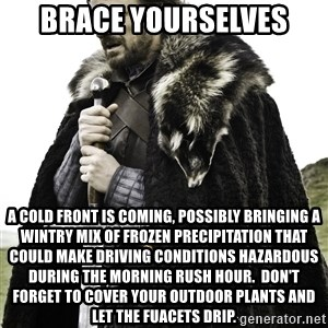 Ned Stark - brace yourselves a cold front is coming, possibly bringing a wintry mix of frozen precipitation that could make driving conditions hazardous during the morning rush hour.  don't forget to cover your outdoor plants and let the fuacets drip.