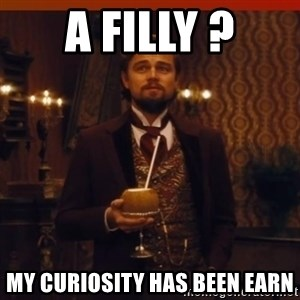 you had my curiosity dicaprio - A filly ? My curiosity has been earn