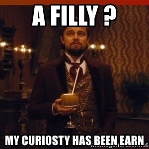 you had my curiosity dicaprio - A filly ? My curiosty has been earn