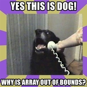 Yes, this is dog! - YEs this is dog! Why is array out of bounds?