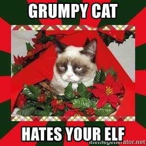 GRUMPY CAT ON CHRISTMAS - Grumpy Cat Hates Your Elf