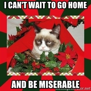 GRUMPY CAT ON CHRISTMAS - I can't wait to go home And be miserable